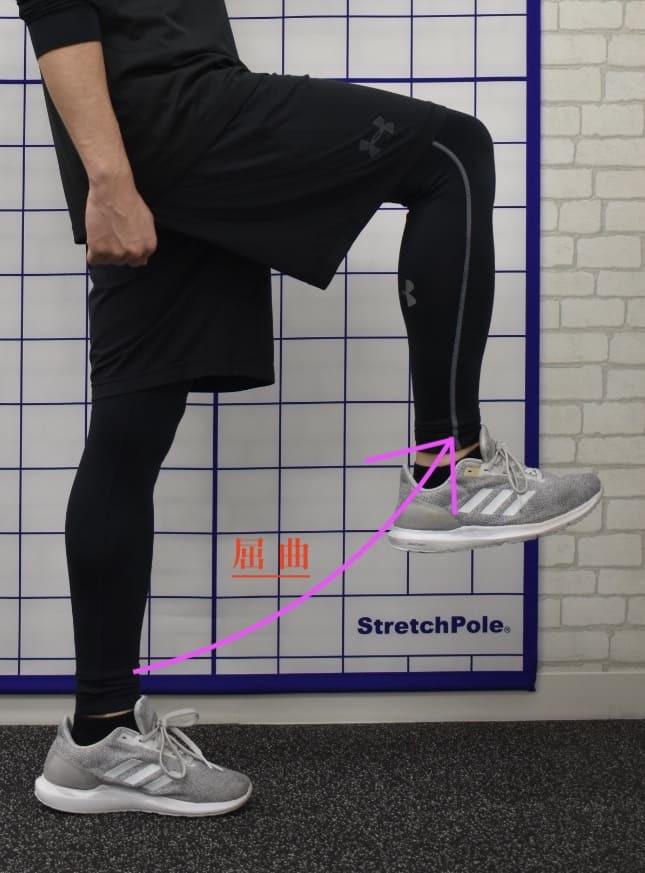 プロのトレーナーが教える!股関節の運動パターンには6通りしかない。