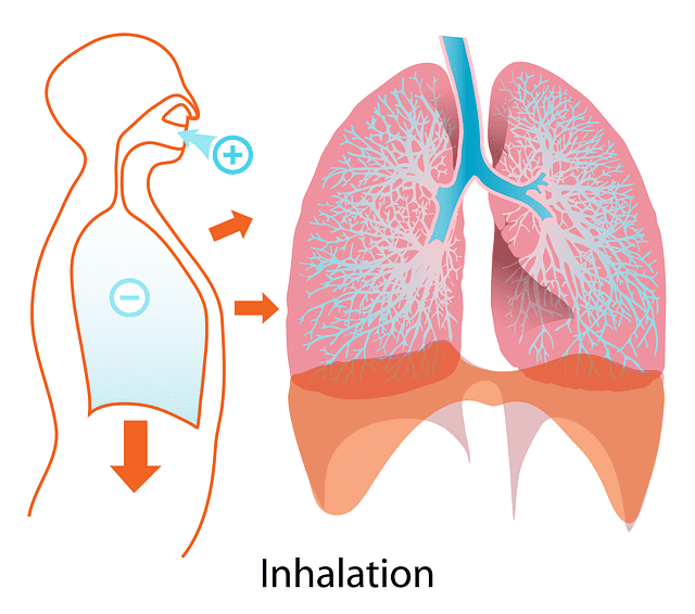 あなたの悩みの根本には呼吸が存在します!